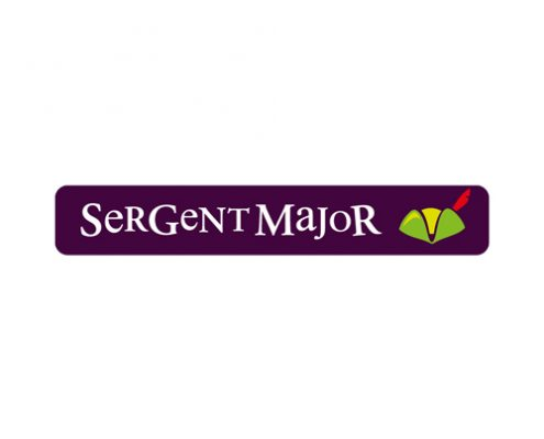 Sergent Major al Centro Commerciale I Petali di Reggio Emilia